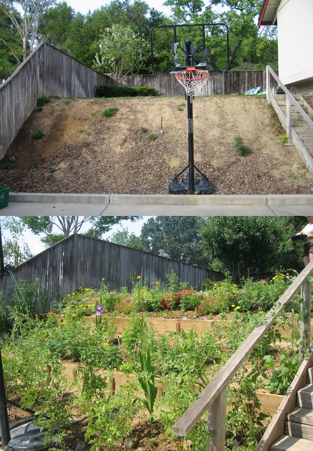 BEFORE AND AFTER: Backyard hill
