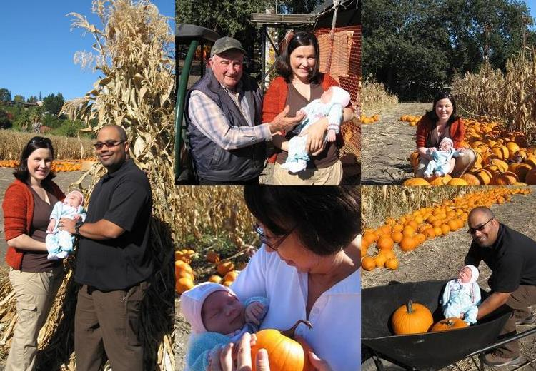PHOTO SUMMARY - Ari's First Pumpkin Patch
