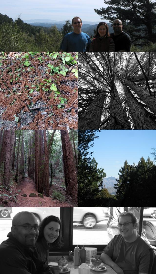 PHOTO-SUMMARY: Redwood Regional Park hike