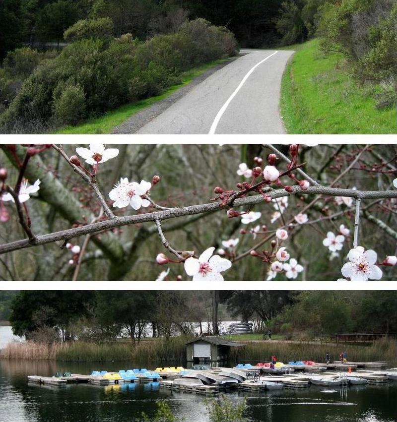 PHOTO SUMMARY: Reservoir walk